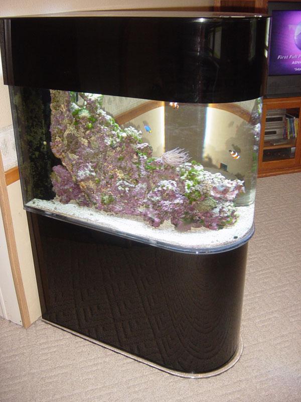 aquariumscabinets100