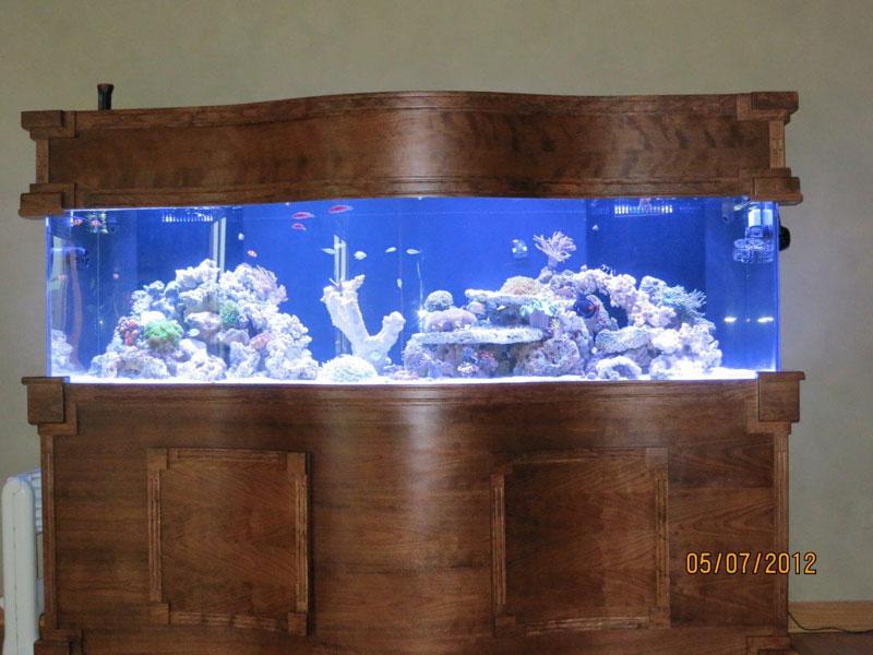 aquariumscabinets16