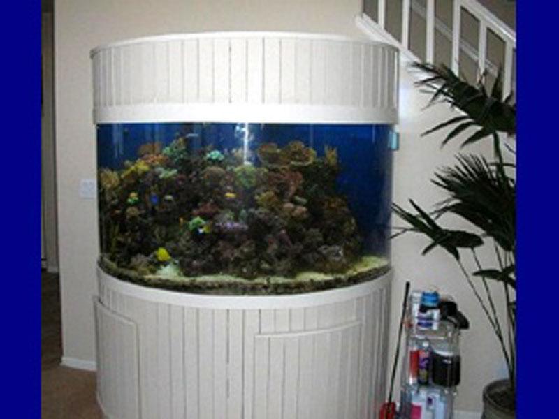 aquariumscabinets23