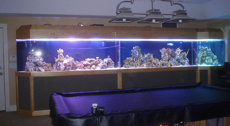 aquariumscabinets26