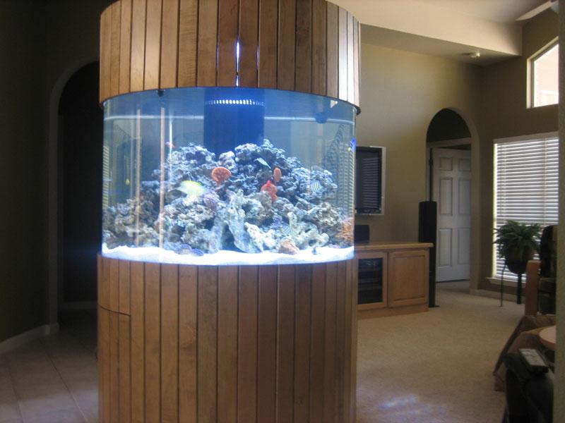 aquariumscabinets29