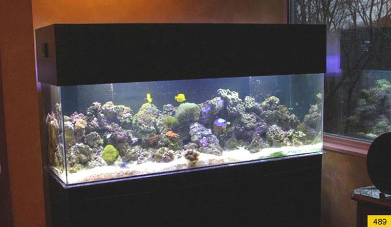 aquariumscabinets31