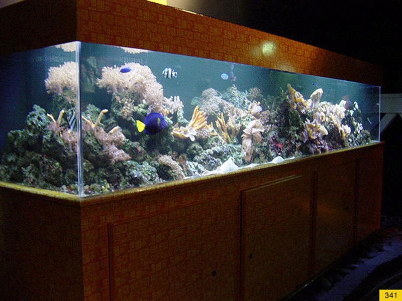 aquariumscabinets32