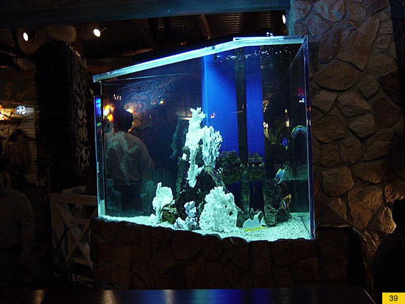 aquariumscabinets35