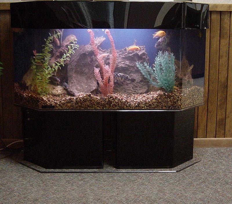 aquariumscabinets37