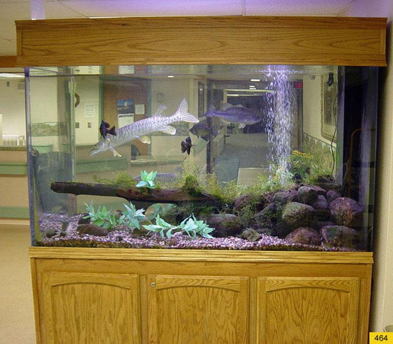 aquariumscabinets42