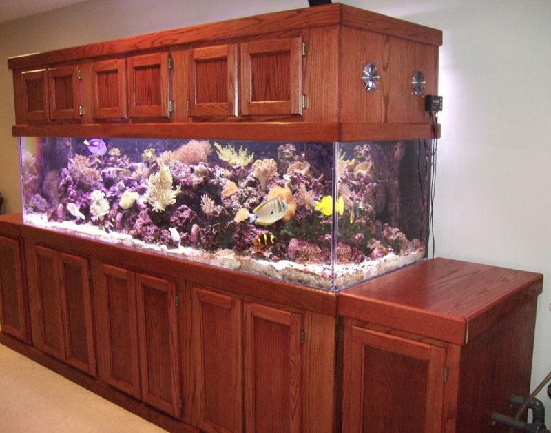 aquariumscabinets43