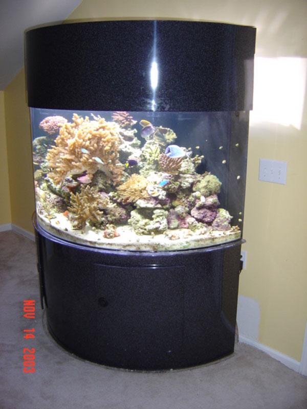 aquariumscabinets60