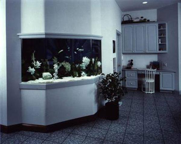 aquariumscabinets61