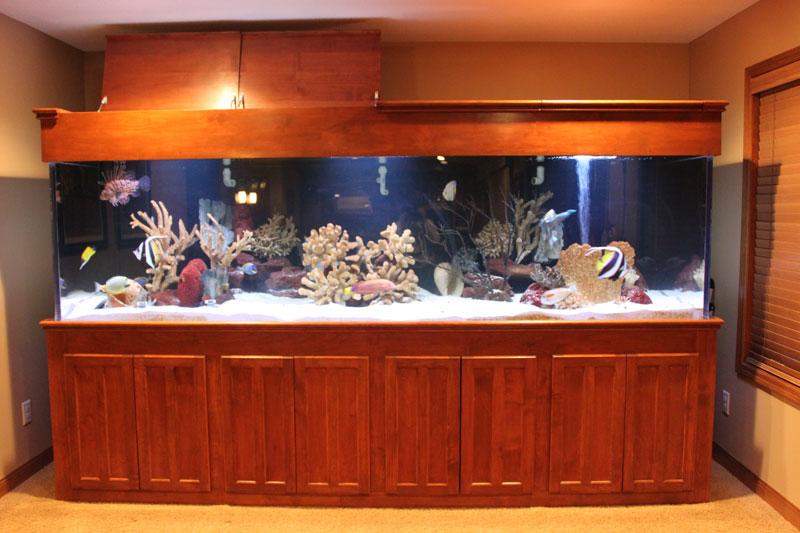 aquariumscabinets64