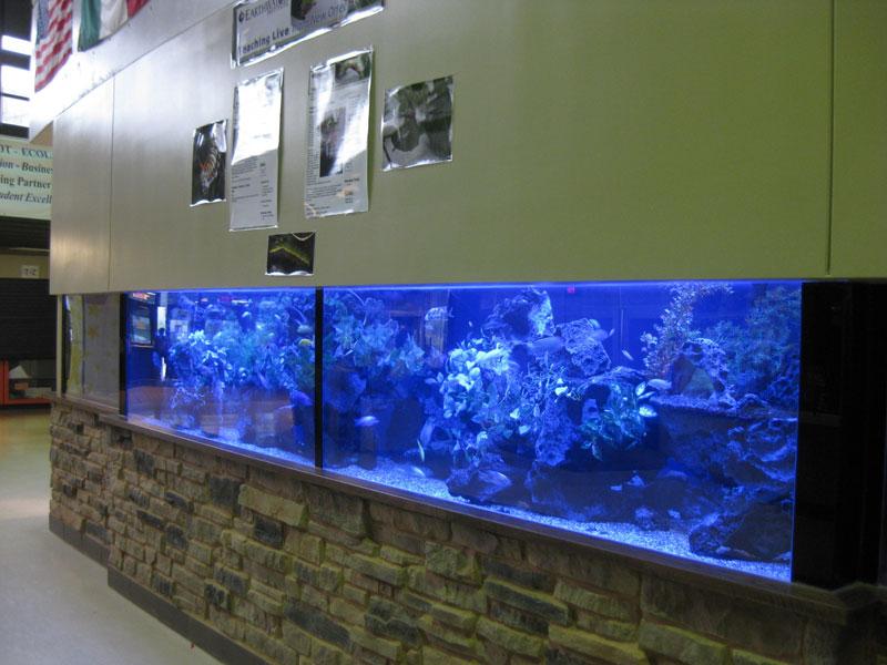 aquariumscabinets65