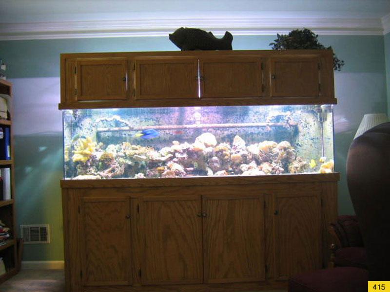 aquariumscabinets67