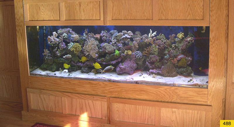 aquariumscabinets68