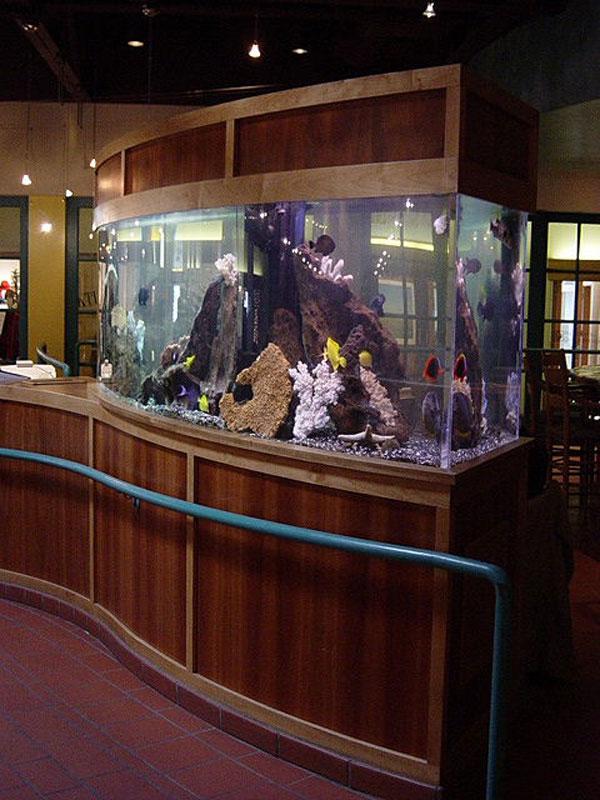 aquariumscabinets72