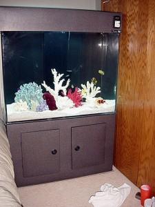 Rectangle Acrylic Aquarium Cabinet