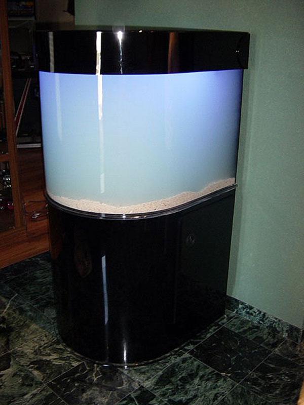 Bullnose Aquarium with Black Cabinetry