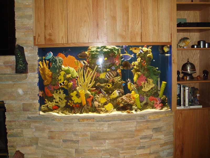 Colorful Aquarium Insert
