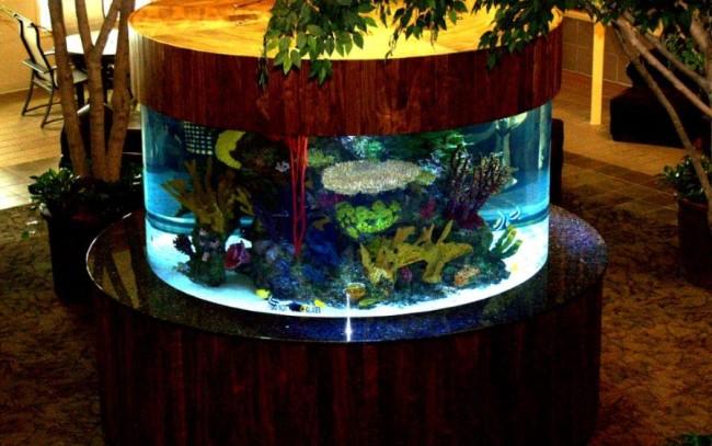 Custom Aquariums, Acrylic Tank Manufacturing, Midwest Custom Aquarium
