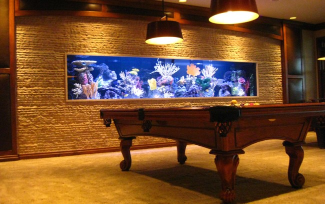 Custom aquariums acrylic tank manufacturing midwest for Atm fish tank