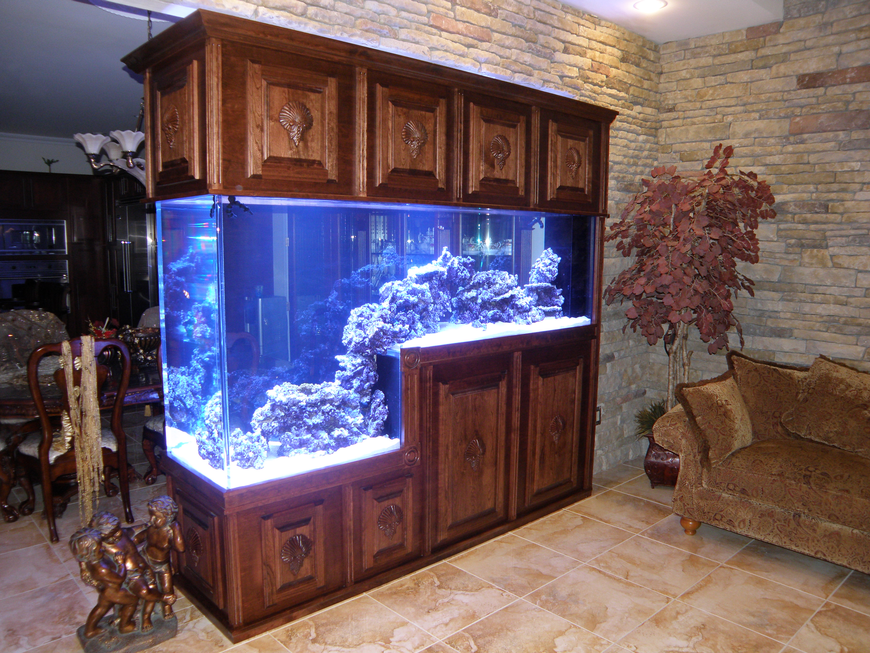 Common Aquarium Shapes Midwest Custom Aquarium Starbuck Mn